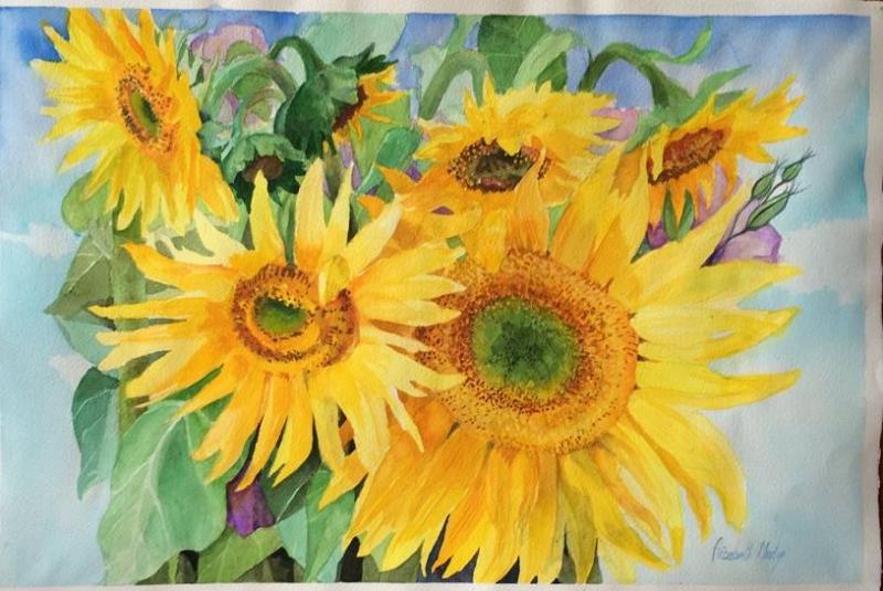 © Elizabeth Martyn - Golden light, Sunflowers