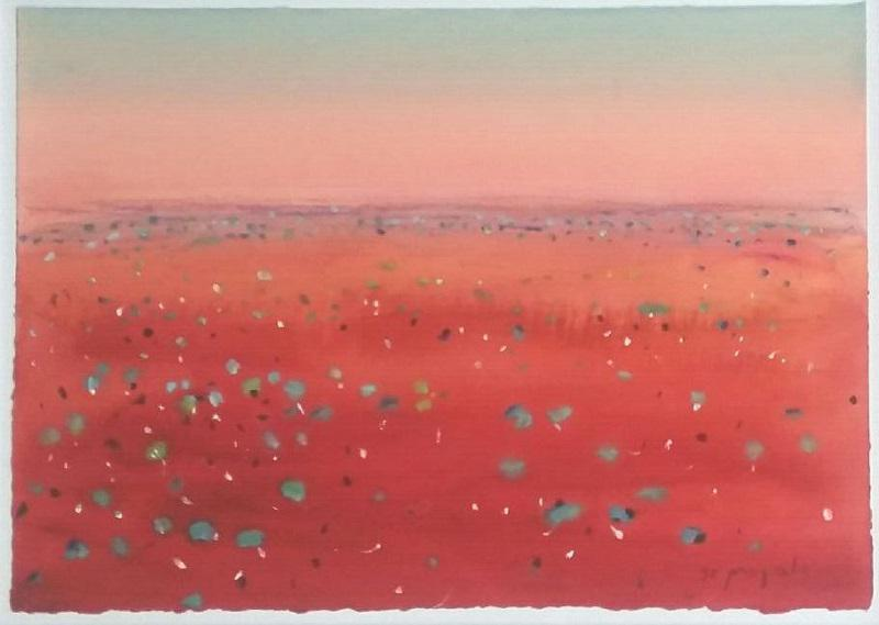 © Faye de Pasquale - Outback patterns (Best in Show 2016)