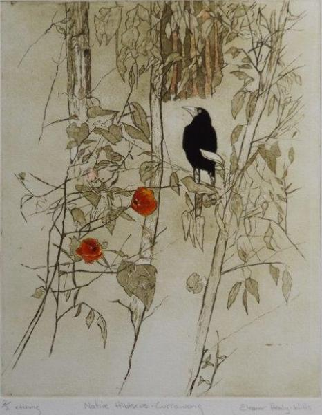 © Eleanor Healy-Wills - Native Hibiscus and Currawong