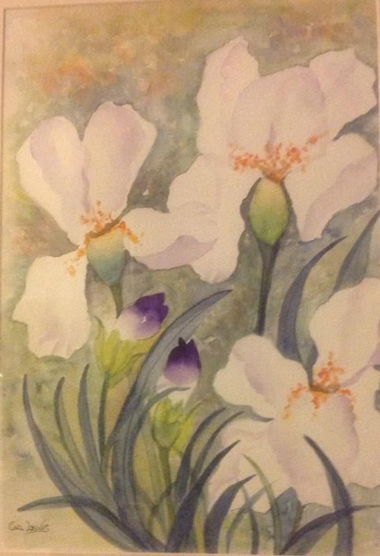 © Colleen Lewis - Bearded iris