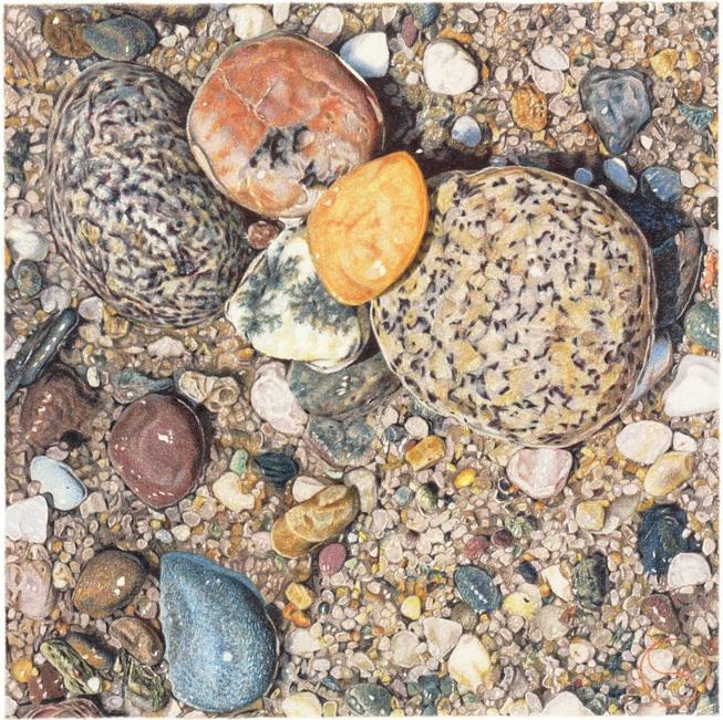 © Geoff Sargeant - Pebble beach, Cape Cod (Highly Commended for Still Life 2016)