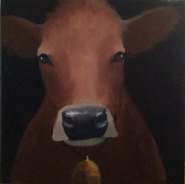 © Carolyn Harrington - Cow by candlelight