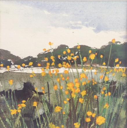 © Elizabeth Vercoe - Local landscape moments - Summer Wildflowers