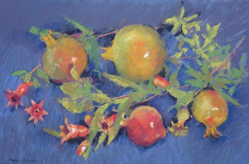 © Robin Dawson - Colourful pomegranates